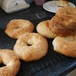 Sesame Seed Rings